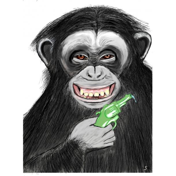 Chimpanse m/ vandpistol
